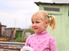 Free Girl Flower Royalty Free Stock Image - 14628046