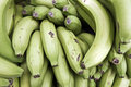 Free Green Bananas Stock Photography - 14634412
