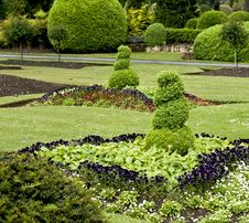 Free Sculpted Shrubs Stock Image - 14630041