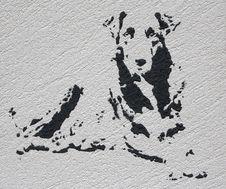 Free Portrait Of Dog Stock Image - 14632411
