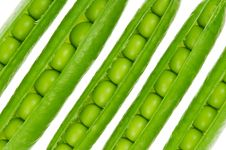 Free Pea Pod Royalty Free Stock Image - 14632966