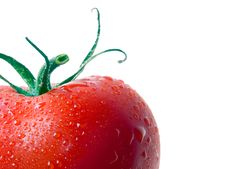 Free Tomato. Royalty Free Stock Image - 14633086