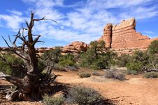Free Canyon Lands National Park Needles District Stock Photo - 14634220