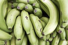 Free Green Bananas Stock Photography - 14634412