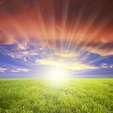 Free Green Field And Blue Sky Royalty Free Stock Photo - 14635775