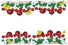 Free Border  With Cherry Stock Images - 14636434