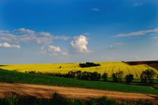 Free Crops Under The Blue Sky Stock Image - 14637221