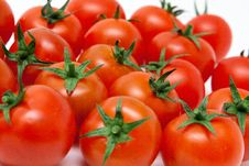 Free Set Of Tomatos Royalty Free Stock Images - 14639699