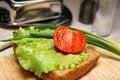 Free Sandwich Stock Image - 14640821