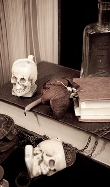 Free Books And Skulls Royalty Free Stock Photo - 14642645