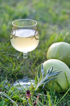 Free Wine With Apples Royalty Free Stock Photography - 14645097