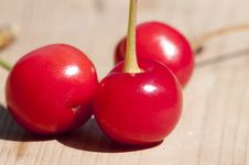 Morello Cherry Close Uo Royalty Free Stock Photo