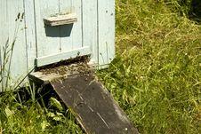 Beehive Tray Stock Photos