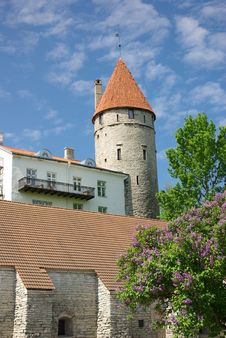 Free Defensive Tower In Tallinn Old Town Royalty Free Stock Photography - 14647177