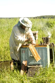 The Beekeeper Works Stock Photos