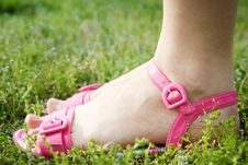 Female Feet In Pink Sandals Royalty Free Stock Image
