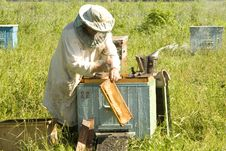 Free Work Of The Beekeeper Stock Photography - 14647592