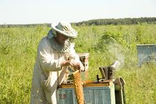 Work Of The Beekeeper Stock Photography