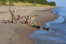 Free The Beach Royalty Free Stock Photo - 14649835