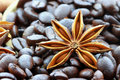Free Anise Star And Coffee Beans Royalty Free Stock Images - 14656189