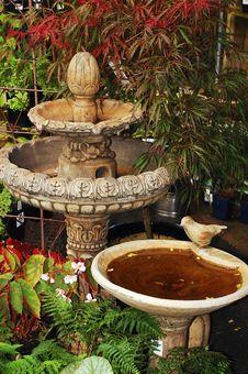 Free Ornamental Birdbath Stock Images - 14650924