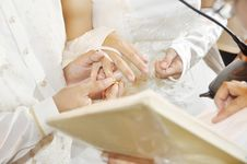 Free Wedding Ring Royalty Free Stock Photo - 14651745