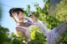 Free Bride In Vineyard Royalty Free Stock Image - 14652946