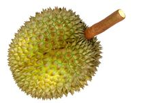 Durian, King Of Tropical Fruit Stock Image