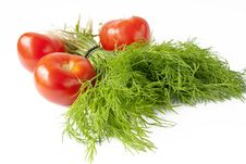 Dill With Red Tomato Over White Royalty Free Stock Images