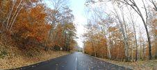 Free Autumn Royalty Free Stock Photos - 14655688