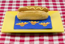 One Hot Dog With Mustard Royalty Free Stock Image