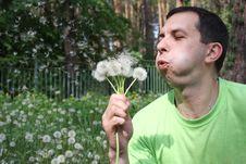 Free Man Blows On A Dandelion Royalty Free Stock Photo - 14656855