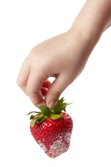 Free Strawberry In The Hand Stock Photography - 14658642