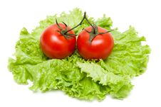 Free Two Ripe Tomatoes On Sheet Of The Salad Stock Images - 14659074