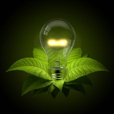 Free Light Bulb With Leafs Royalty Free Stock Images - 14659609