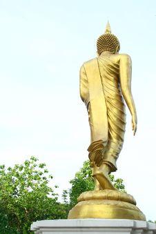 Free Buddha Statue Stock Photos - 14659953