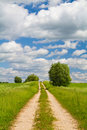 Free Road Through The Meadow Royalty Free Stock Photo - 14660845