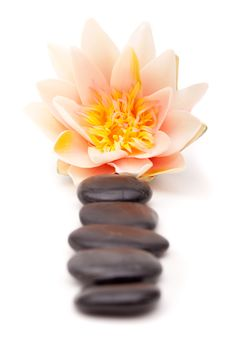 Free Lastone Therapy Rocks Royalty Free Stock Photo - 14660785