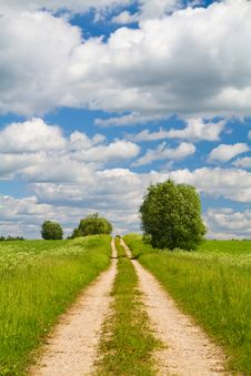 Road Through The Meadow Royalty Free Stock Photo