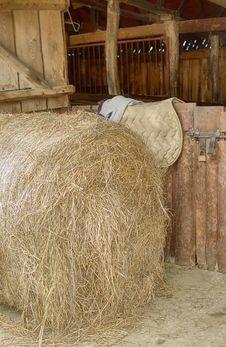 Free Hay Stock Photos - 14662083