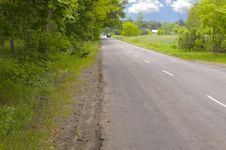 Free Road In Forrest Royalty Free Stock Photo - 14662085