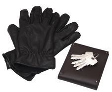 Gloves From Purse Stock Photography
