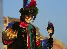Free Venice Carnival Mask Stock Image - 14668771