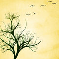 Free Textured Tree With Birds Royalty Free Stock Images - 14677689