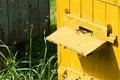 Free Beehive Royalty Free Stock Photos - 14678548