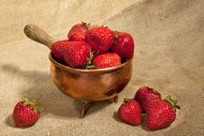 Free Strawberry Stock Images - 14670114