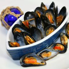 Free Mussels Royalty Free Stock Image - 14670256