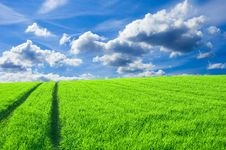 Free Green Field And Blue Sky Conceptual Image. Royalty Free Stock Photography - 14672327