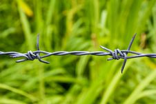 Free Barbed Wire Royalty Free Stock Image - 14675296