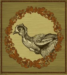 Free Hen In Vintage Frame Stock Photo - 14675900